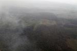 Forest degradation in Indonesian Borneo [kalbar_1229]