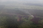 Aerial vew of burning peatlands and forest in Indonesian Borneo [kalbar_1234]