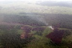 Aerial vew of burning peatlands and forest in Indonesian Borneo [kalbar_1236]