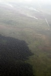 Aerial vew of burning peatlands and forest in Indonesian Borneo [kalbar_1252]
