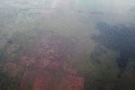 Forest degradation in Indonesian Borneo