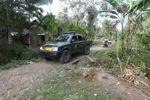 Forest ranger truck