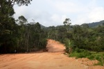 Mining road through rainforest in Indonesian Borneo [kalbar_2275]