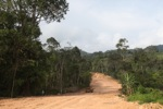 Mining road through rainforest in Indonesian Borneo [kalbar_2277]