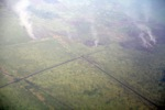 Aerial view of oil palm in West Kalimantan [kalbar_2339]