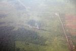 Aerial view of oil palm in West Kalimantan [kalbar_2349]