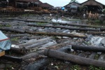 Timber from Central Kalimantan being sold at a market in Banjarmasin