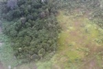 Deforestation and degradation as seen from an airplane in South Kalimantan [kalsel_0241]