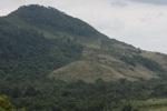 Deforestation in Taman Hutan Raya National Park [kalsel_0265]