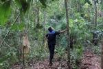 Forest ranger [kalsel_0300]