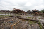 Floating logs in Banjarmasin [kalsel_0323]