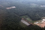 Oil palm and forest in Jambi