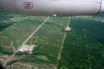 Cleared forest for agriculture near frontier town, Coca, in the Ecuadorian Amazon