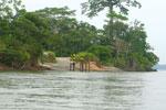 Road off the Napo River in the Ecuadorian Amazon