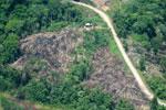 Settlements and deforestation along Napo River in Ecuadorian Amazon