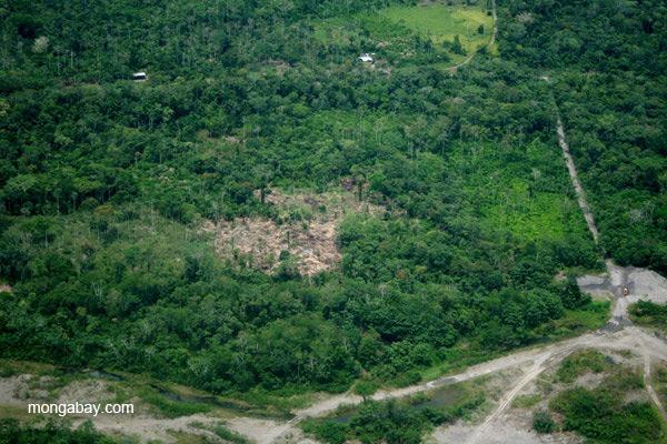 Fragmented forest in Ecuadorian Amazon