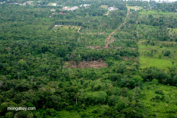 Deforestation and fragmentation at the edge of the frontier town, Coca, in the Ecuadorian Amazon