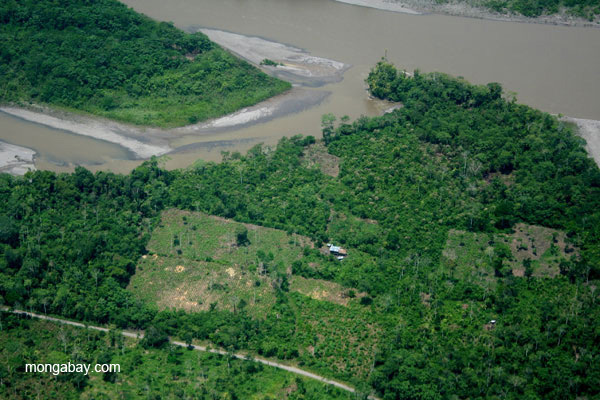 settlements and deforestation along Napo River in Ecuadorian Amazon