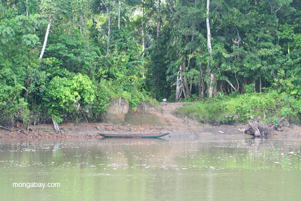 Canoe on the edge of the Napo River in the Ecuadorian Amazon