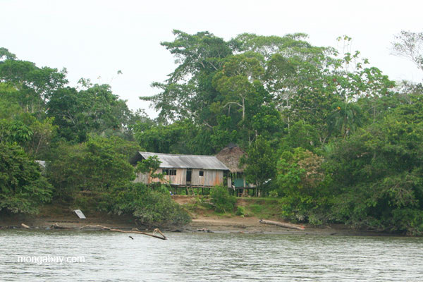 Settlement on the Napo River in the Ecuadorian Amazon