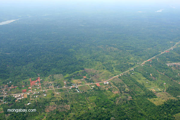 Road and settlement cut through rainforest along the Napo River in the Ecuadorian Amazon