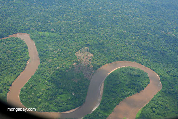 Aerial view of the curling Napo River in the Ecuadorian Amazon