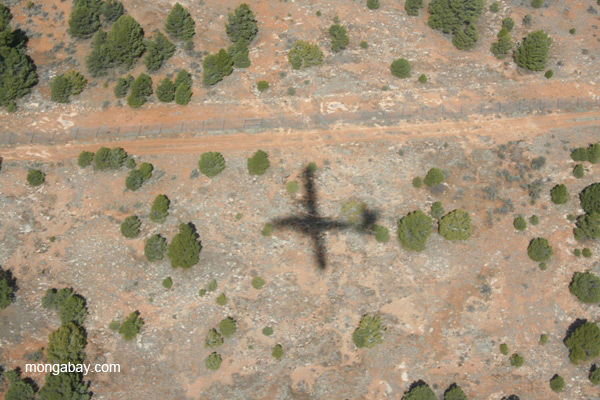 Aerial photo of plane's shadow in Grand Canyon National Park, Arizona