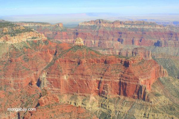 Aerial view of the Grand Canyon, Arizona