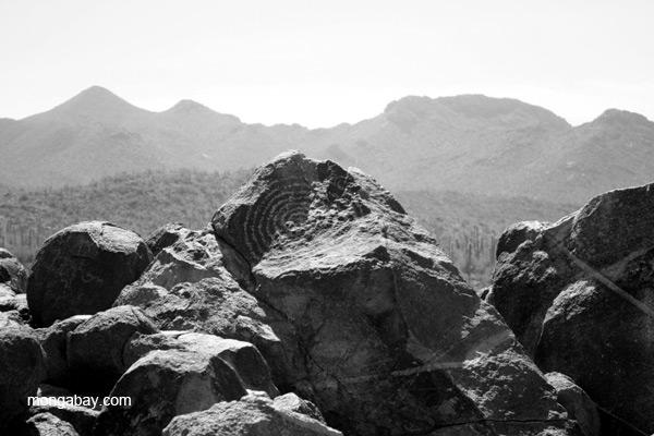 Petroglyphs in Saguaro National Park, Arizona