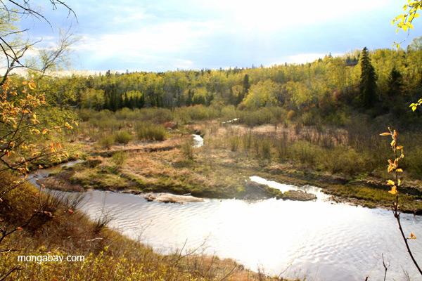 River landscape in Gooseberry State Park, Minnesota