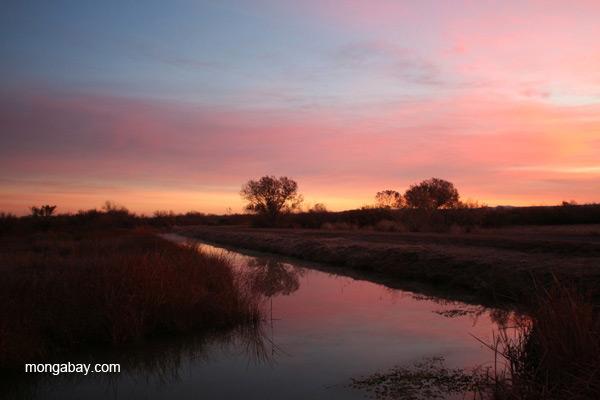 Sunrise over Bosque del Apache National Wildlife Refuge, New Mexico