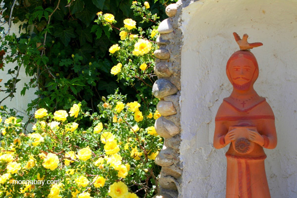 St. Francis statue with roses in Santa Fe, New Mexico