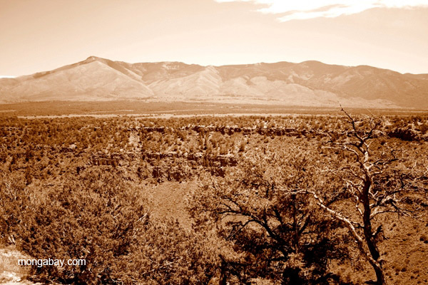 Desert landscape in drought-hit New Mexico. Photo by: Tiffany Roufs.