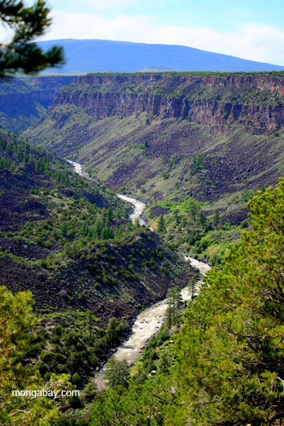 The Rio Grande viewed from the Orilla Verde Recreation Area in northern New Mexico