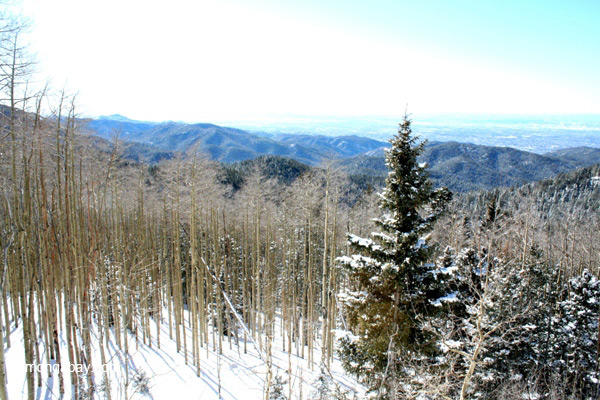 Winter in the Sangre de Cristo Mountains, New Mexico