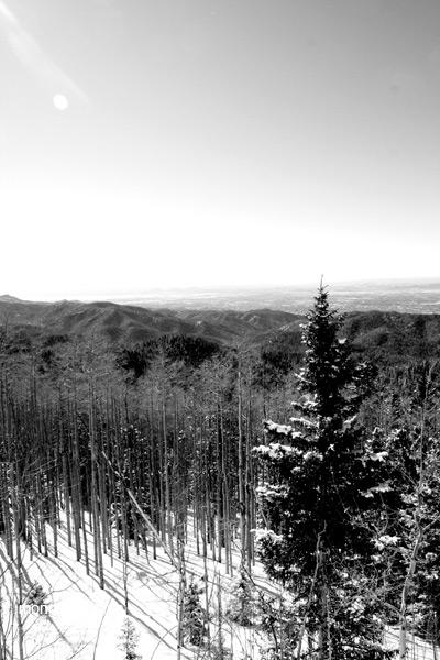 Winter in the Sangre de Cristo Mountains, New Mexico