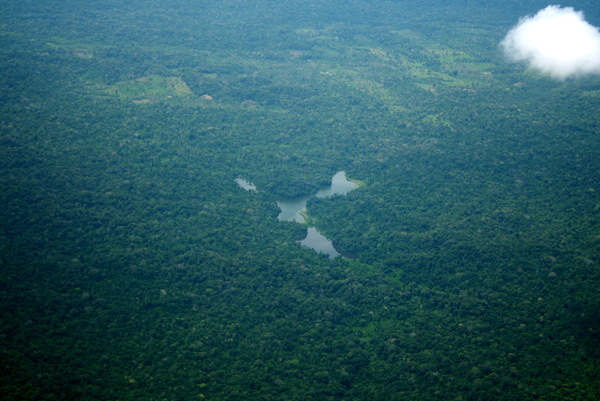 Aerial view of river and forest with fragmentation in the background in the Ecuadorian Amazon