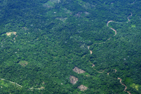 Aerial view of fragmented forest and roads in the Ecuadorian Amazon