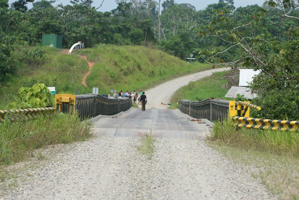 Bridge for oil road in Yasuni National Park in the Ecuadorian Amazon