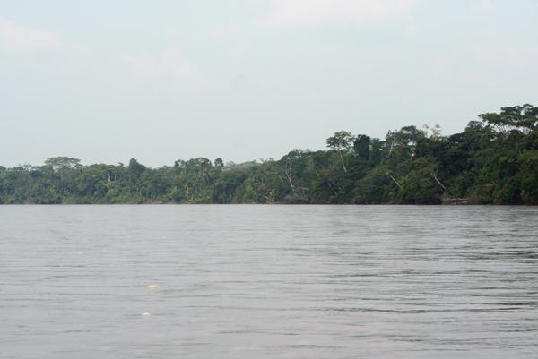 Napo River in the Ecuadorian Amazon