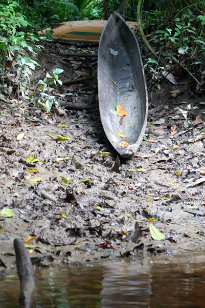 Canoe an Anangu Creek in Yasuni National Park in the Ecuadorian Amazon