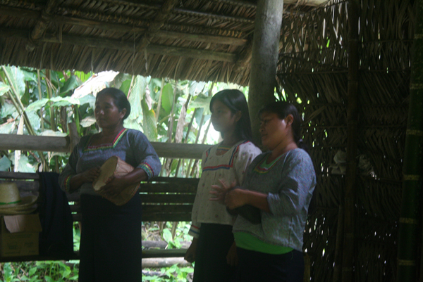 Women from the Anangu Quichua community performing a traditional song and dance in Yasuni National Park in the Ecuadorian Amazon