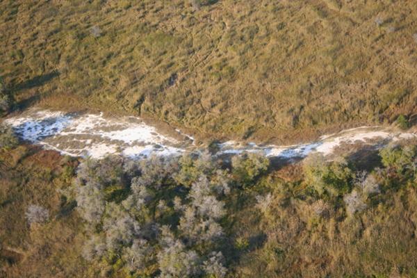 Landscape of Okavango delta from above