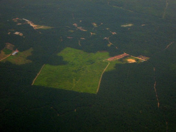 Aerial view of deforestation in Sabah, Malaysia
