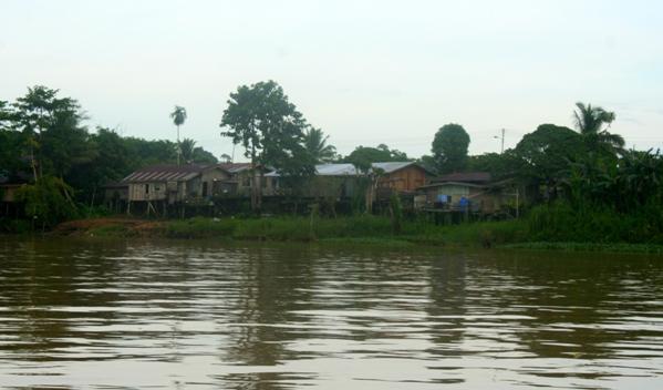 River community on the Kinabantagan River in Sabah Malaysia