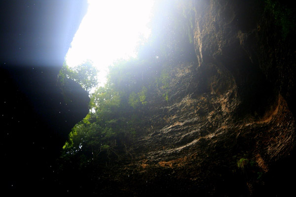 Overhead opening in the Gomantong Cave in Sabah, Malaysia