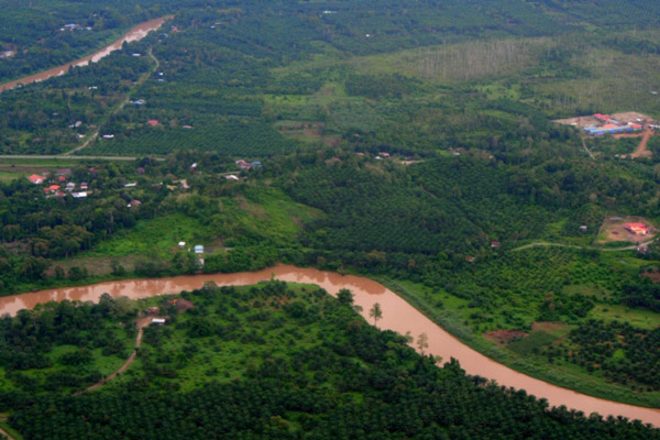 Aerial view of palm oil plantations and river in Sabah, Malaysia