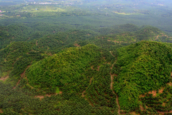 High altitude forest fragments surrounded by palm oil plantations in Sabah, Malaysia. The funds to start a palm oil plantation are often garnered by selling timber from the logged-over forest. Photo by: Jeremy Hance.