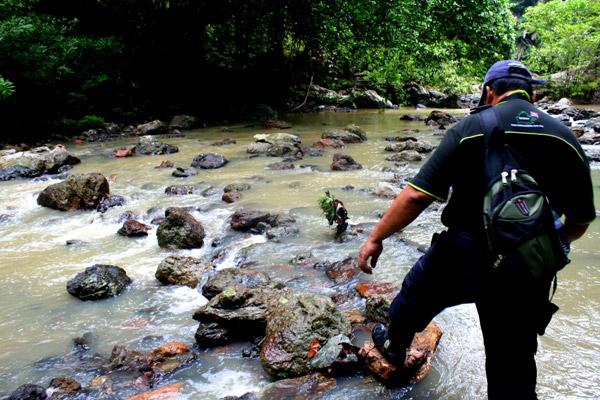 Forging river in Tabin Wildlife Reserve, Sabah, Malaysia