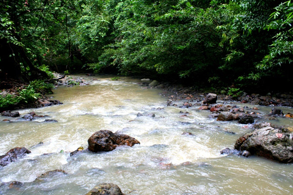 River in the Tabin Wildlife Reserve, Sabah, Malaysia